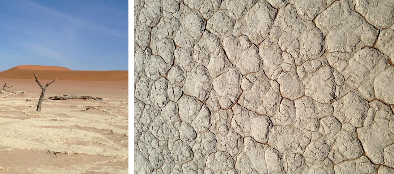 Natural African Textures